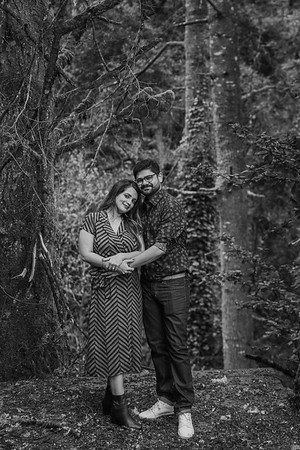 Mehul and Namita-153