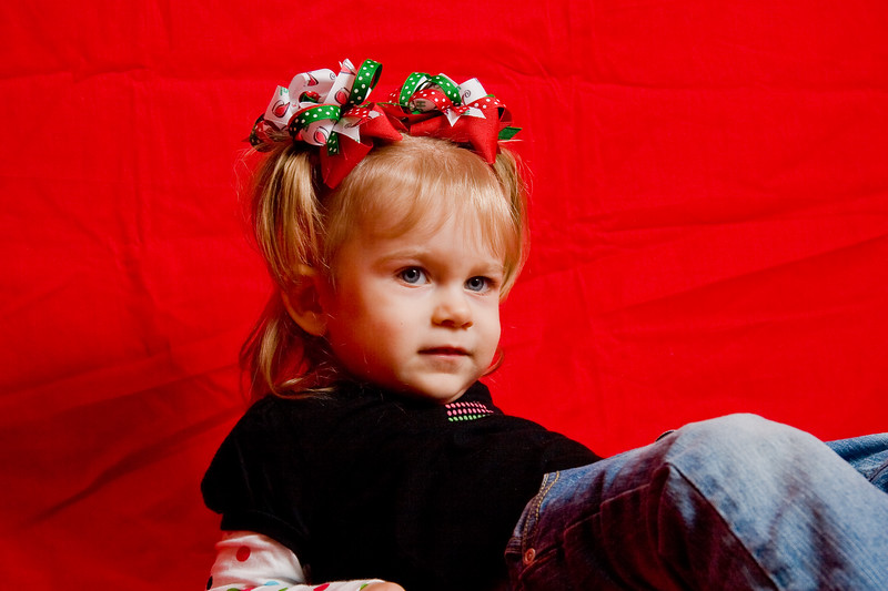 Bella <br /> Christmas 2008 Portraits