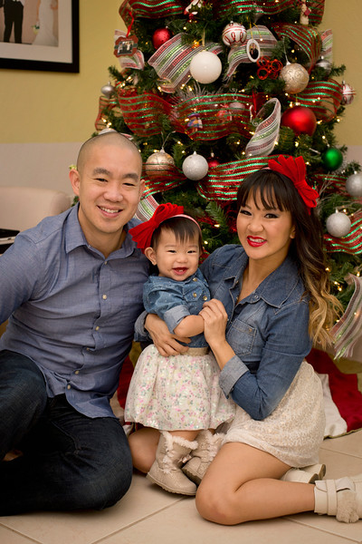 Mui Family Christmas