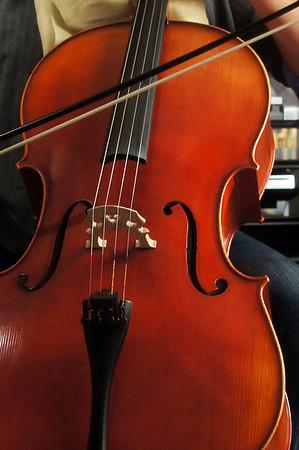 Musician (cellist)
