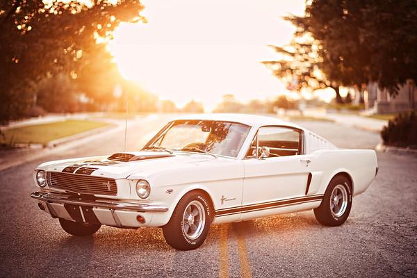 Mustang Shoot