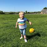 Jack at F Copleys, 14-5-2018 (IMG_2485) 4k