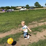 Jack at F Copleys, 14-5-2018 (IMG_2493) 4k