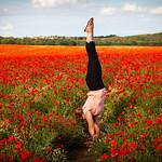 Karen in Poppy Field, Royston, 20-6-2020 (IMG_9559) 4k