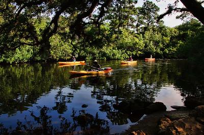 Estero river running along Koreshan St. Park, Kayaks
