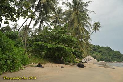 Natalie @ Desa Permatang Damar Laut