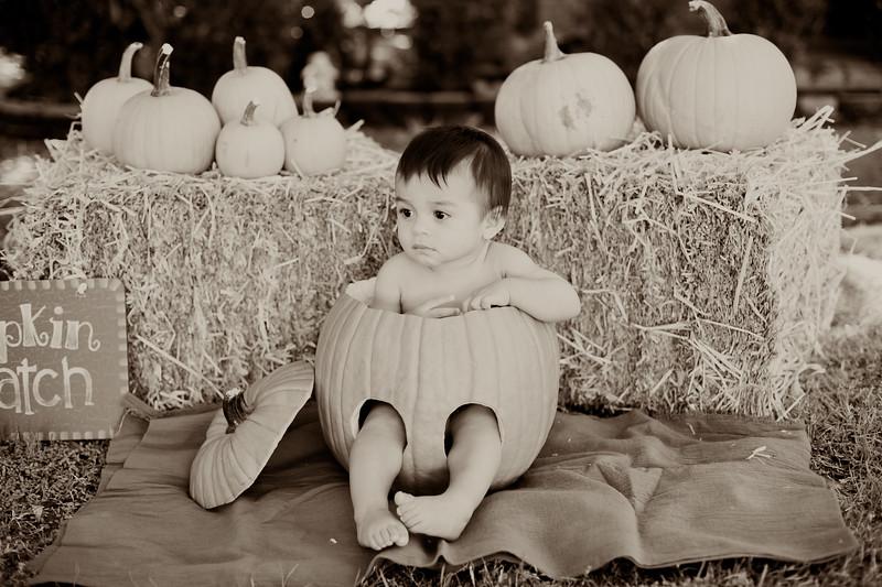 Nathan Halloween Photos