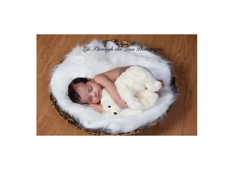 baby with bear