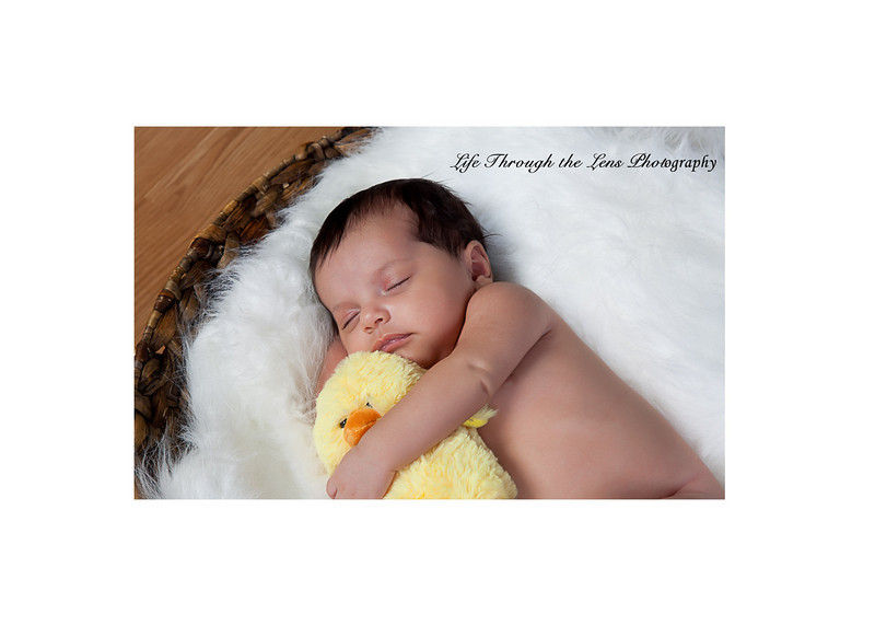 baby with duck