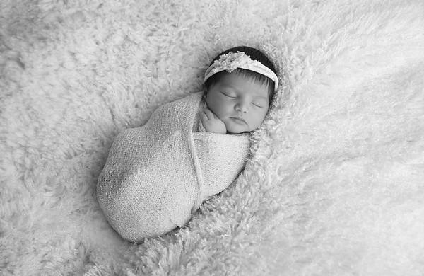 2017_2 Cora Newborn