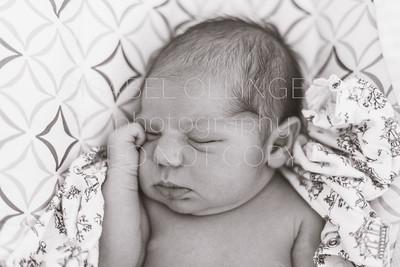 Mattea Newborn-1