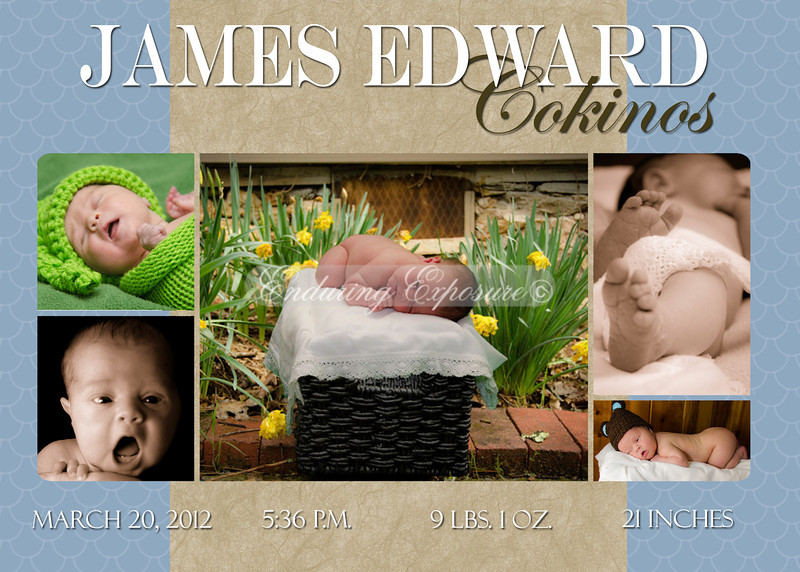 Birth Announcements, Sample 2: Blue and tan, with five photos