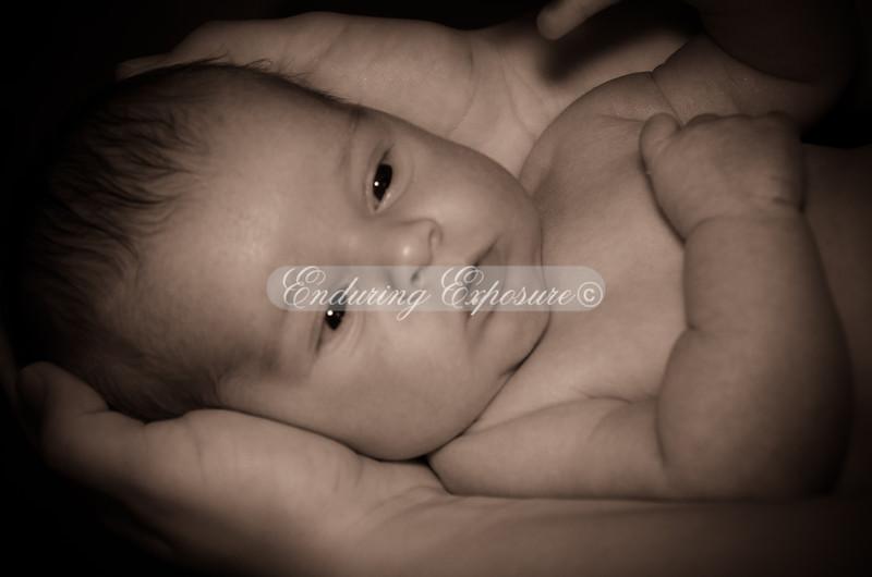 2012James-newborn-34