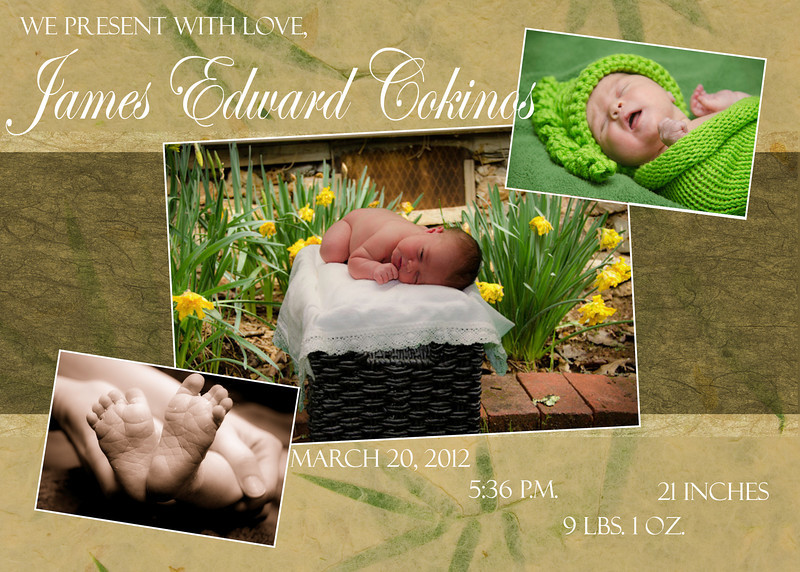Birth Announcements, Sample 3: natural tones with 3 photos