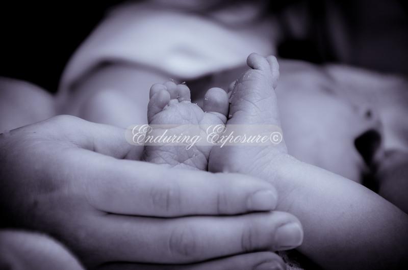 2012James-newborn-18