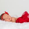 Alidia Theil Newborn Session-43