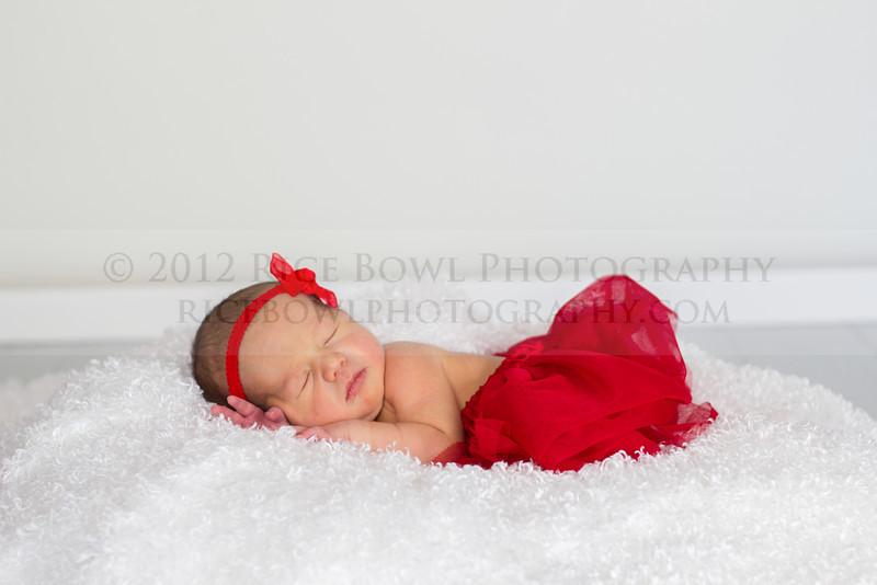 Alidia Theil Newborn Session-39