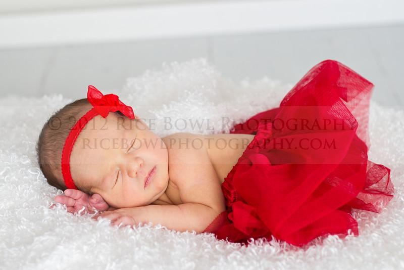 Alidia Theil Newborn Session-44