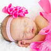 Joanna Torres Newborn Session