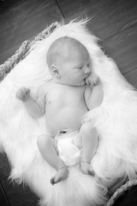 LR_newborn_2018-39