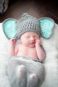 LR_newborn_2018-27