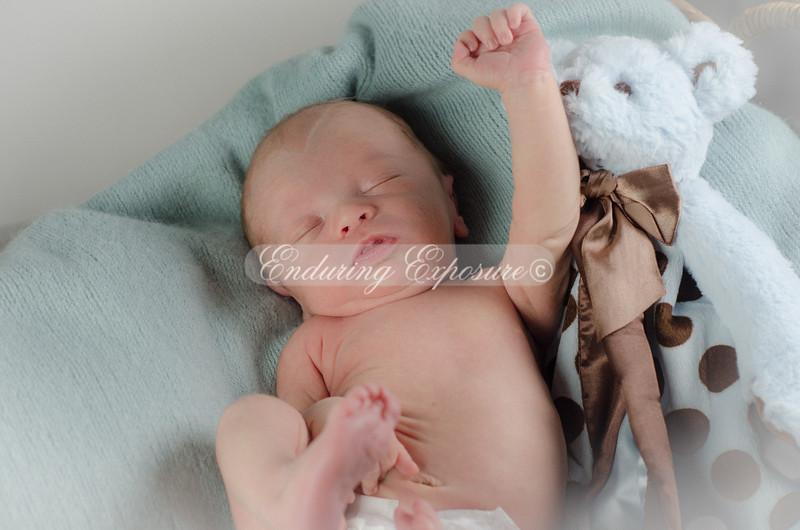 2013-Preston-newborn-36
