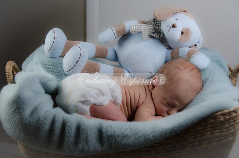 2013-Preston-newborn-41