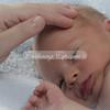 2013-Preston-newborn-19