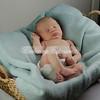 2013-Preston-newborn-32