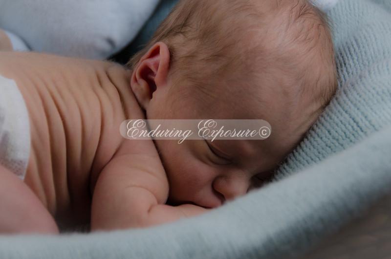 2013-Preston-newborn-42