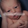 2013-Preston-newborn-49