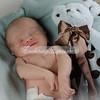 2013-Preston-newborn-34