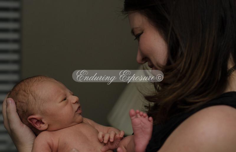 2013-Preston-newborn-56