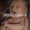 2013-Preston-newborn-50