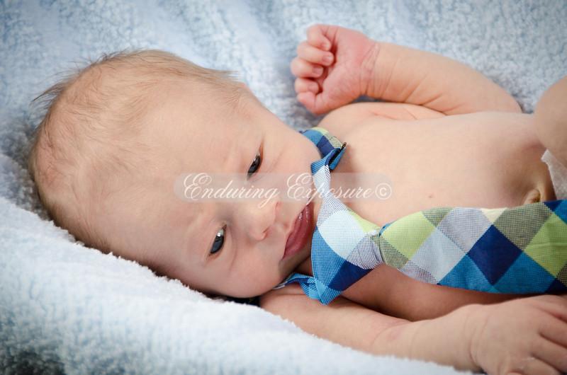 2013-Preston-newborn-12