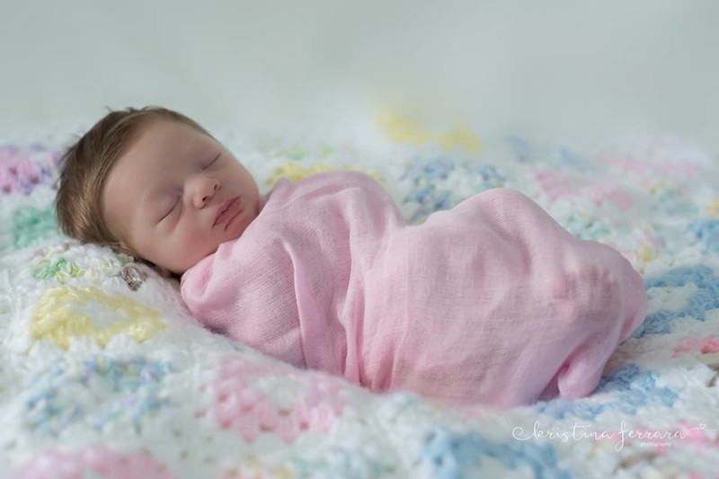 Baby Girl Newborn Photo