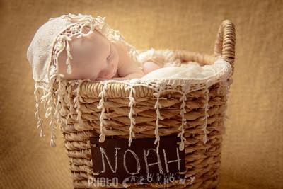 {Newborn}  Noah (38 of 78)