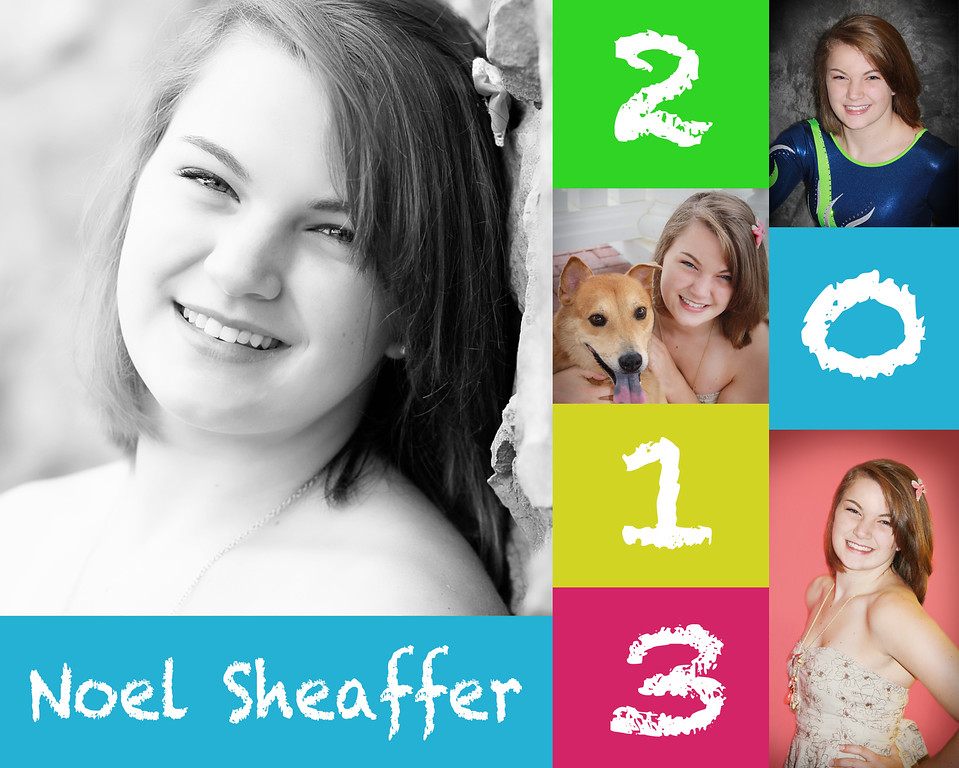 Noel Sheaffer