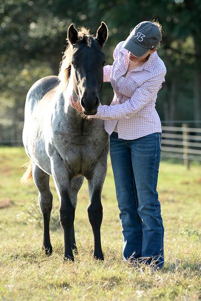 10 7 20 Stac Horses d 212
