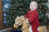 Good horsey - Christmas 2007 - Juneau