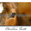 """Through The Eye of a Horse""<br /> <br /> This Elite Series Print comes in limited sizes.<br /> It is also available for download."