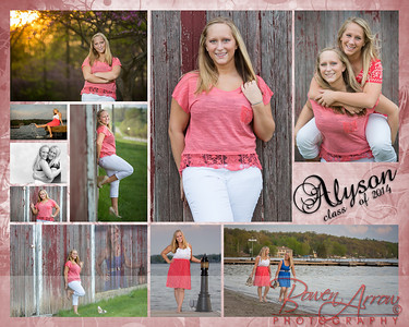 Alyson Neff Collage 2014