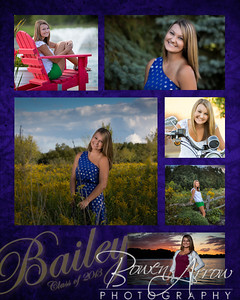 Bailey Hinman 2013 Collage 001