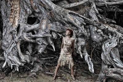 Patricia_driftwood roots Jen Crites