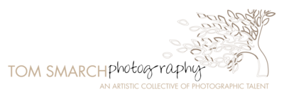 TomSite7d - logo