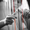 Harping On  132/365