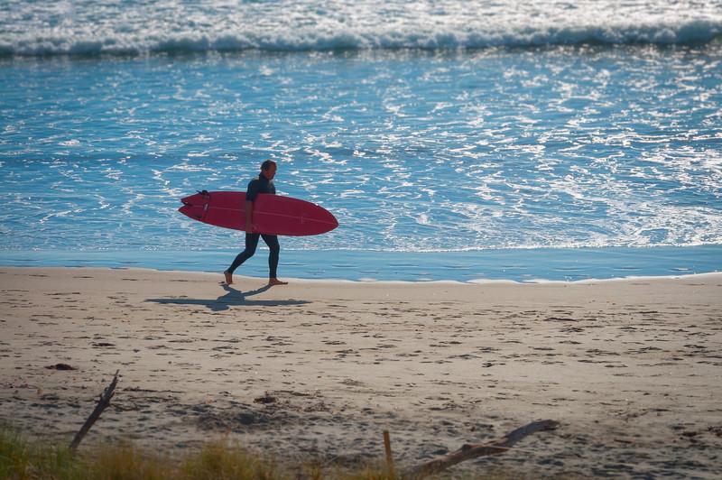 Surfer, The Mount, Tauranga, 2014.