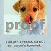 Vicky_eat homework