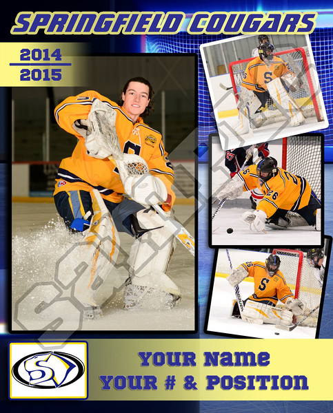 4 Picture Poster - Order individually or discounted for your whole team