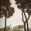 Smeele-Barcelona-Teasers-008